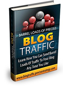 Barrel Loads Of Precise Blog Traffic