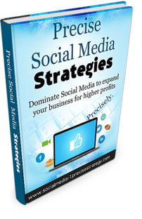Precise Social Media Strategies for Internet Marketers