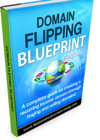 Domain Flipping Blueprint