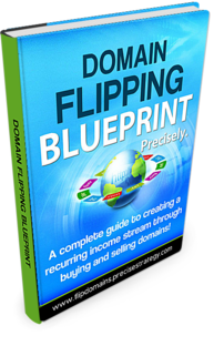 Domain Flipping Blueprint